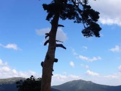 Senderismo Sierra de Guadarrama - Mujer Muerta; iniciacion senderismo; rutas montaña cerca madrid